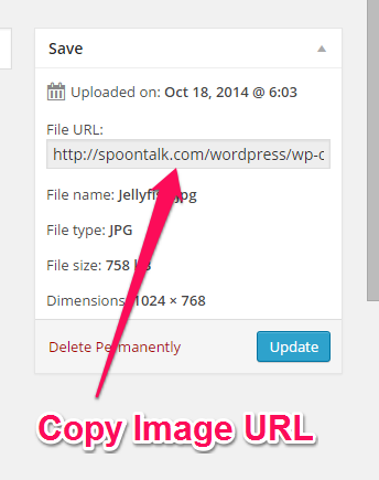 Copy Image URL from Edit Screen