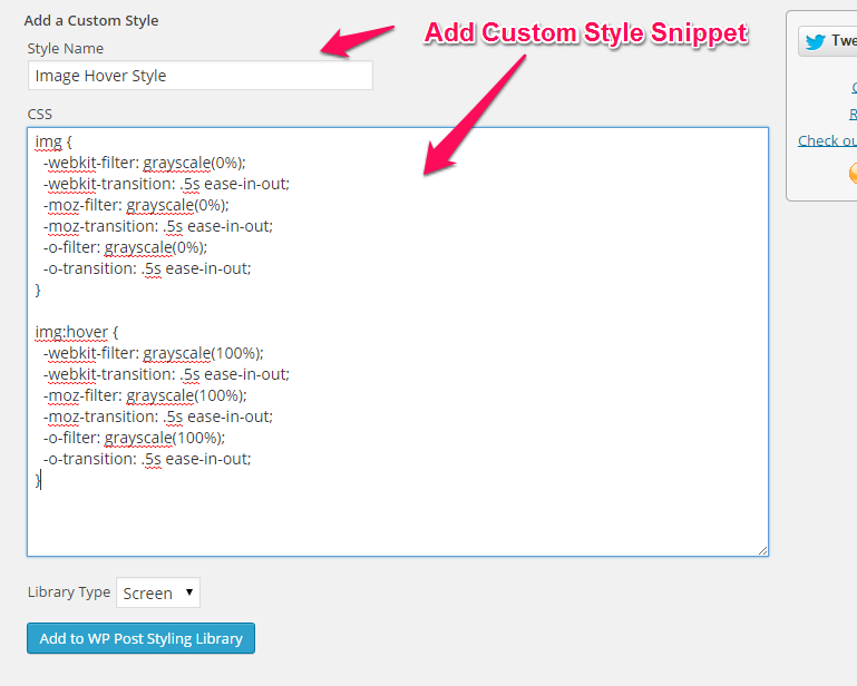 Custom CSS Style Snippet Screen